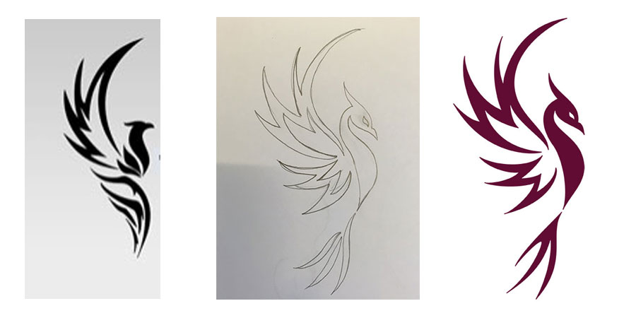 Phoenix design progression